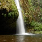 10 Best Oregon Hiking Sites for Day Hikers