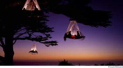 Tree camping - suspended tent
